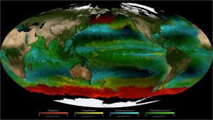 Fytoplankton in de oceanen